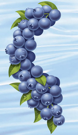 Blueberry Juice Art