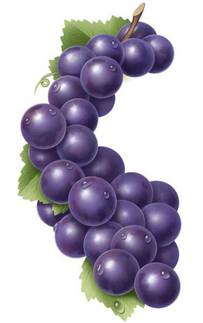 Purple Grape Art